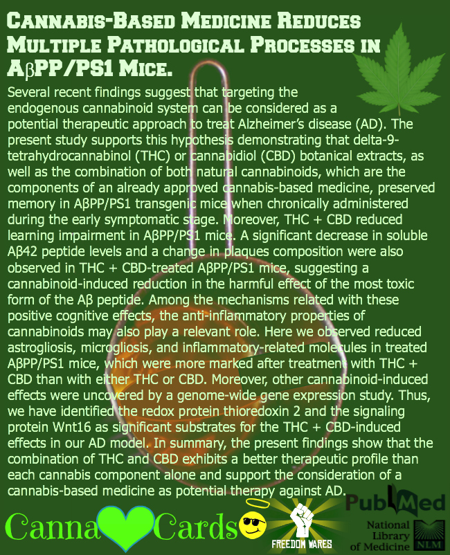 Cannabis-Based Medicine Reduces Multiple Pathological Processes in AβPPPS1 Mice. fb2