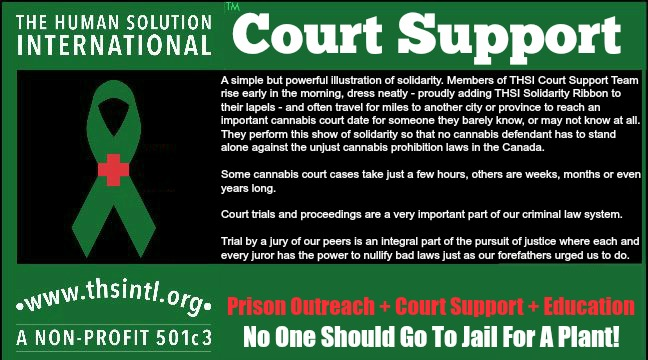 Legalization Or Chaos In Our Legal System? - Freedom Wares