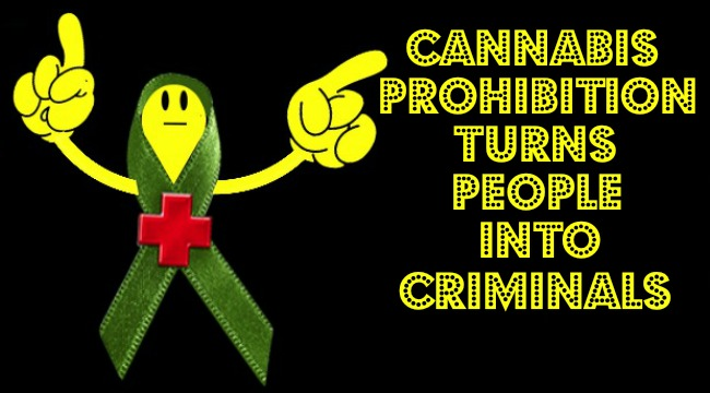 Cannabis Prohibition Turns People Into Criminals THSI Final PSA